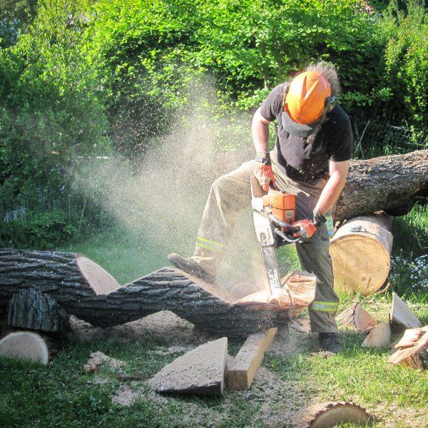 Neue Skulpturen aus Holz – Die Welle
